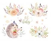 Fotografie roztomilý kreslený akvarel kresba Ježek a květiny, boho ilustrace návrhových prvků