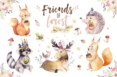 Cute watercolor with hand-drawn animals. Squirrels, hedgehog, raccoon, deer with plants and mushrooms