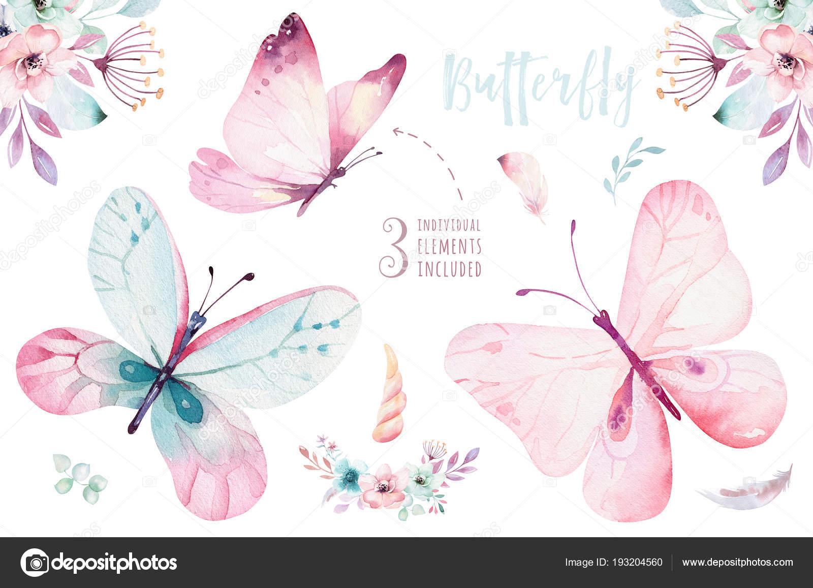 Akvarel Kresba Kvetin Motylu Izolovanych Bilem Pozadi Stock