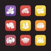 Potravinové skupiny ikony nastavit