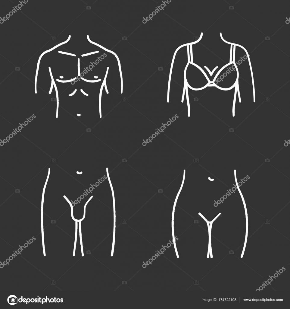 Conjunto de iconos de elementos cuerpo humano — Archivo Imágenes ...