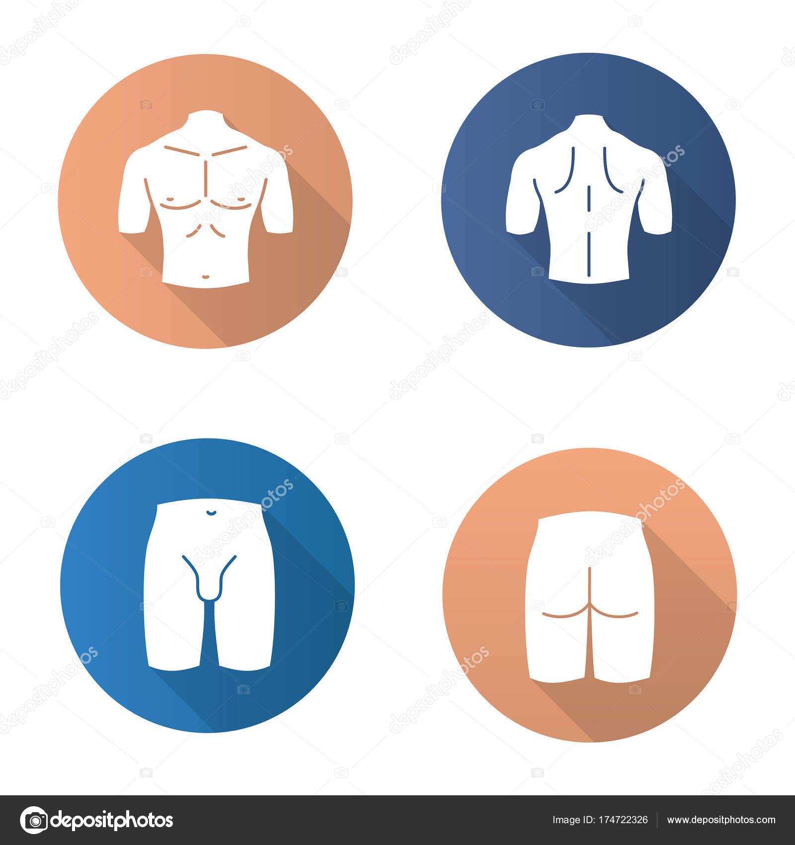Männliche Körperteile Icons Set — Stockvektor © bsd #174722326