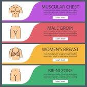 Části lidského těla web banner šablony sady. Svalnaté muže do prsou, ženské poprsí, zóna bikini, mužského rozkroku. Položky menu barva stránky. Vektor záhlaví desing