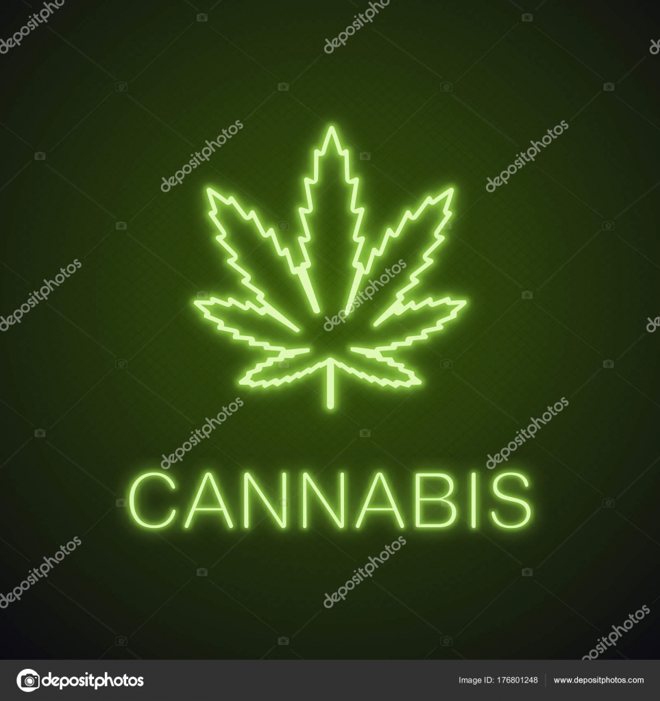 Marijuana Leaf Neon Light Icon Weed Glowing Sign Cannabis Vector