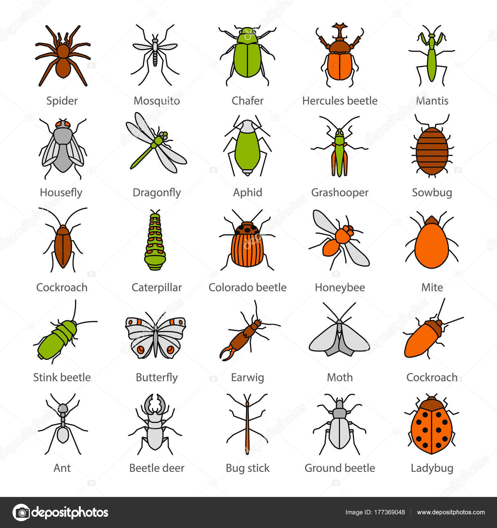 Insects Color Icons Set Bugs Entomologist Collection Butterfly ...