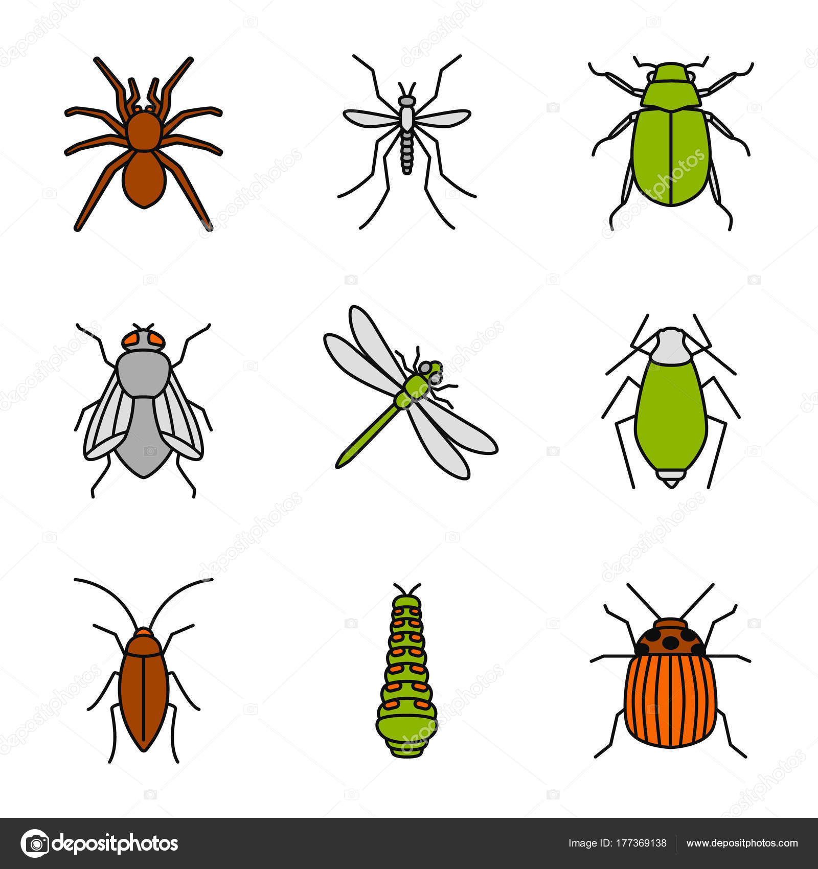 Insects Color Icons Set Spider Mosquito Maybug Cockroach Housefly ...