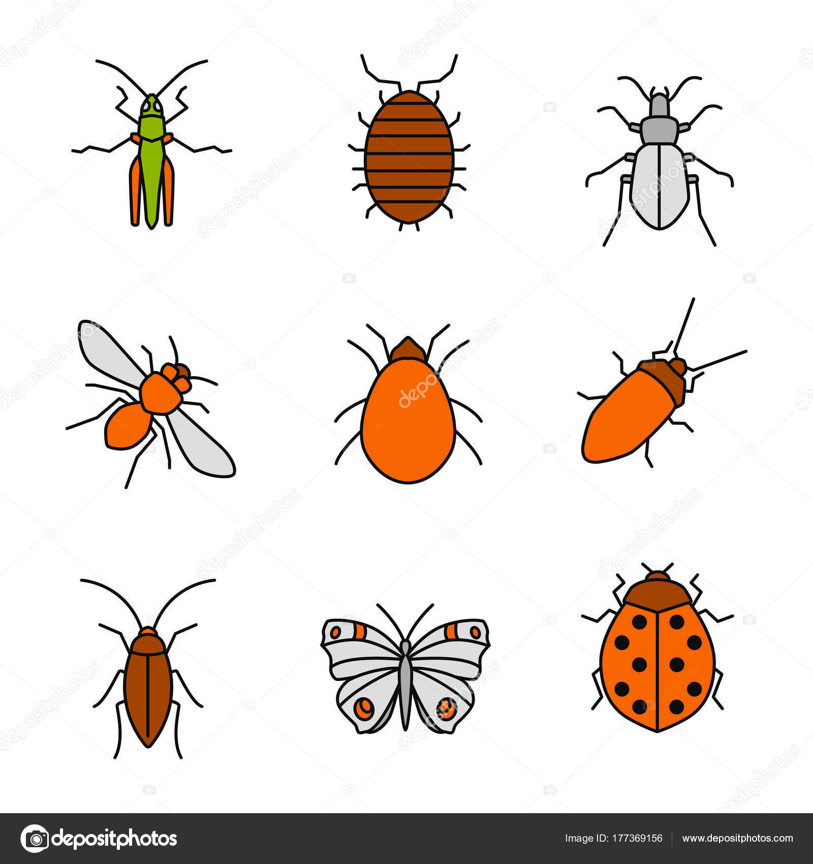 Insects Color Icons Set Grasshopper Woodlice Ground Beetle Honey ...