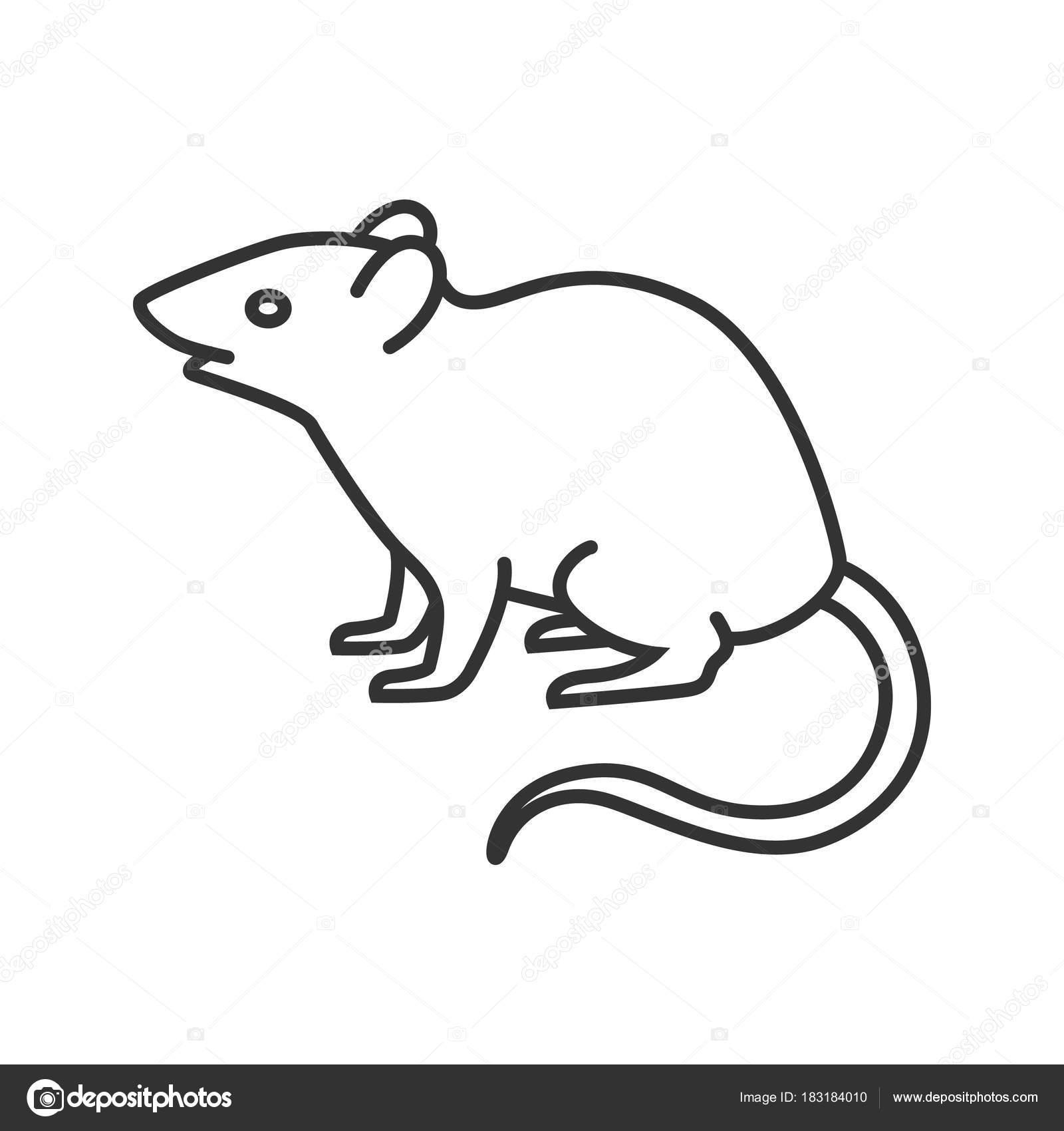 Line Drawing Rat : マウス ラットの線形アイコン 齧歯動物 細い線の図 輪郭のシンボル ベクトル分離外形図 — ストックベクター