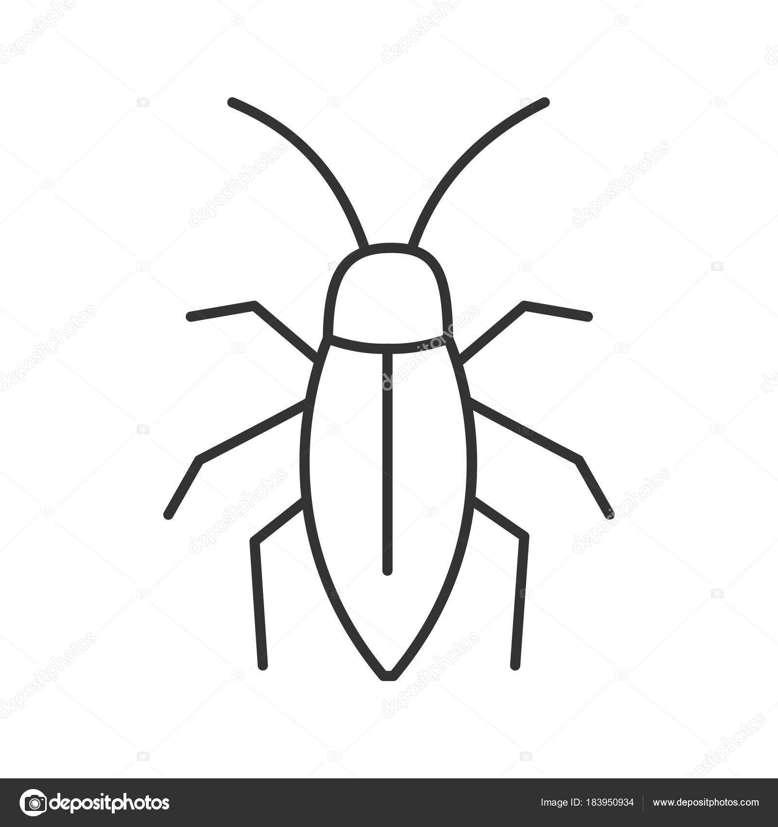 S mbolo lineal cucaracha ilustraci n l nea delgada s mbolo contorno vector aislado vector de - Dessin de cafard ...