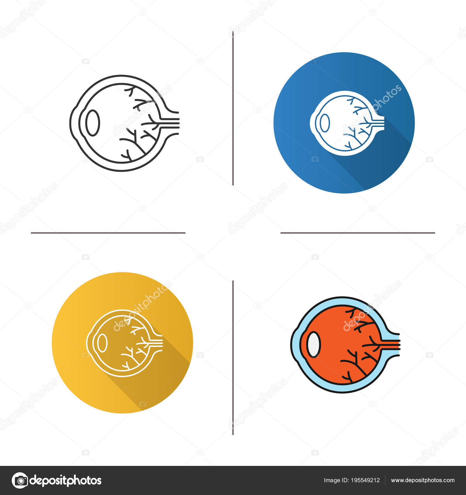 Eye Anatomy Icon Flat Design Linear Color Styles — Stock Vector ...