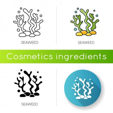 Seaweed icon. Natural component. Skincare treatment product. Antiaging effect. Marine grass extract. Cosmetic ingredient. Linear black and RGB color styles. Isolated vector illustrations icon