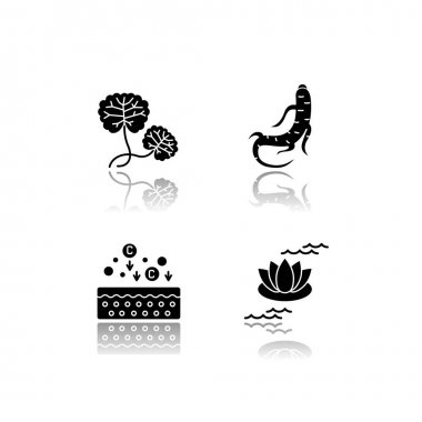 Cosmetic ingredient drop shadow black glyph icons set. Centella plant. Ginseng root. Collagen formula. Lotus flower. Nourishing and healing effect. Isolated vector illustrations on white space icon