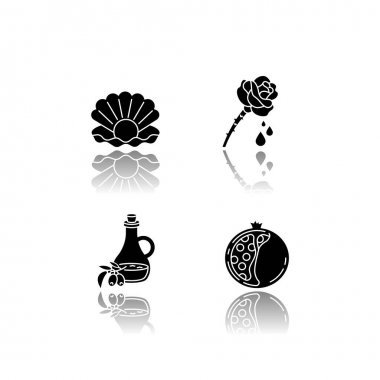 Cosmetic ingredient drop shadow black glyph icons set. Pearl in oyster shell. Rose extract. Olive oil. Sliced pomegranate. Korean beauty. Isolated vector illustrations on white space icon