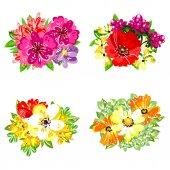 Sada krásných barevných květin