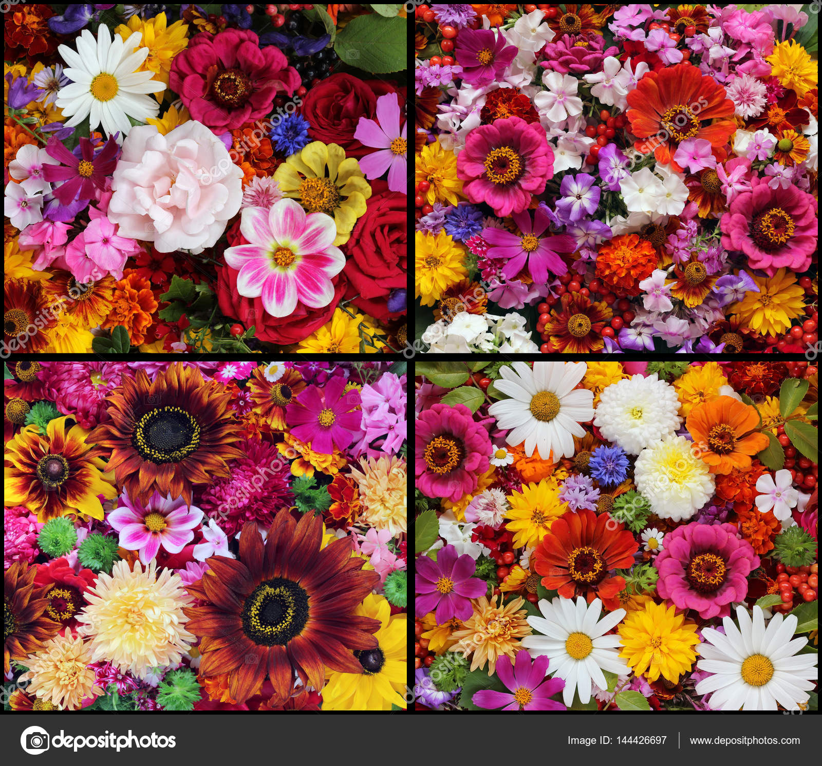 Set Of Beautiful Floral Backgrounds Stock Photo Balagur 144426697