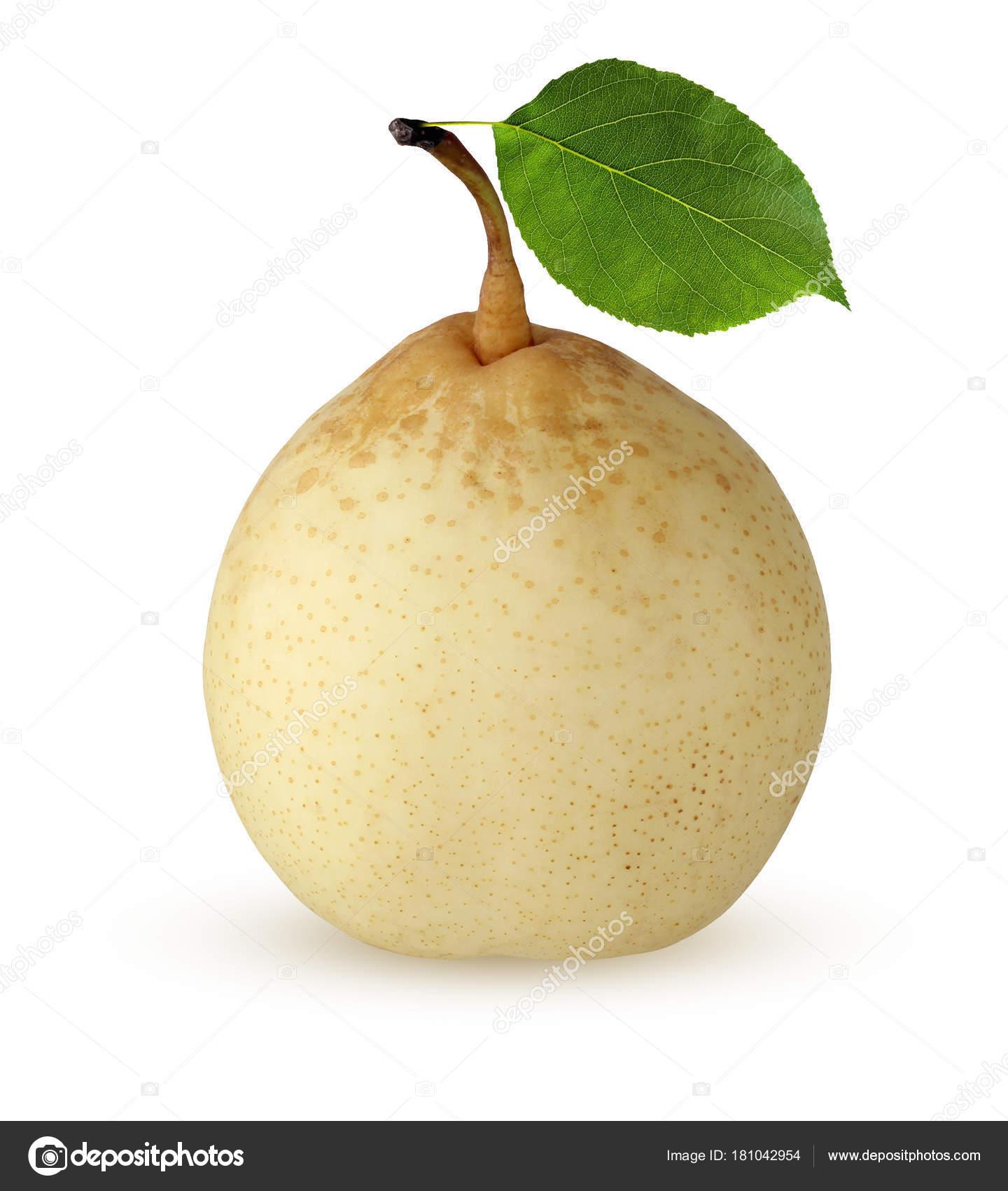 Asian pear leaf phrase... super