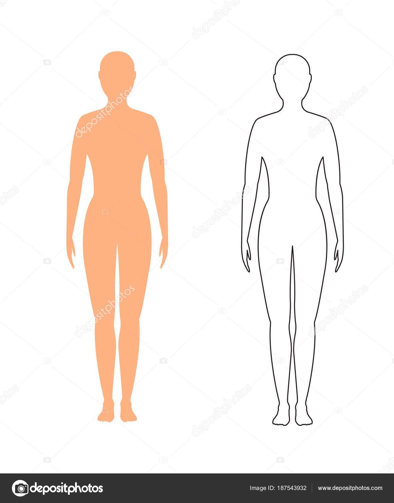 silueta femenina (contorno) sobre fondo blanco, vector — Vector de ...