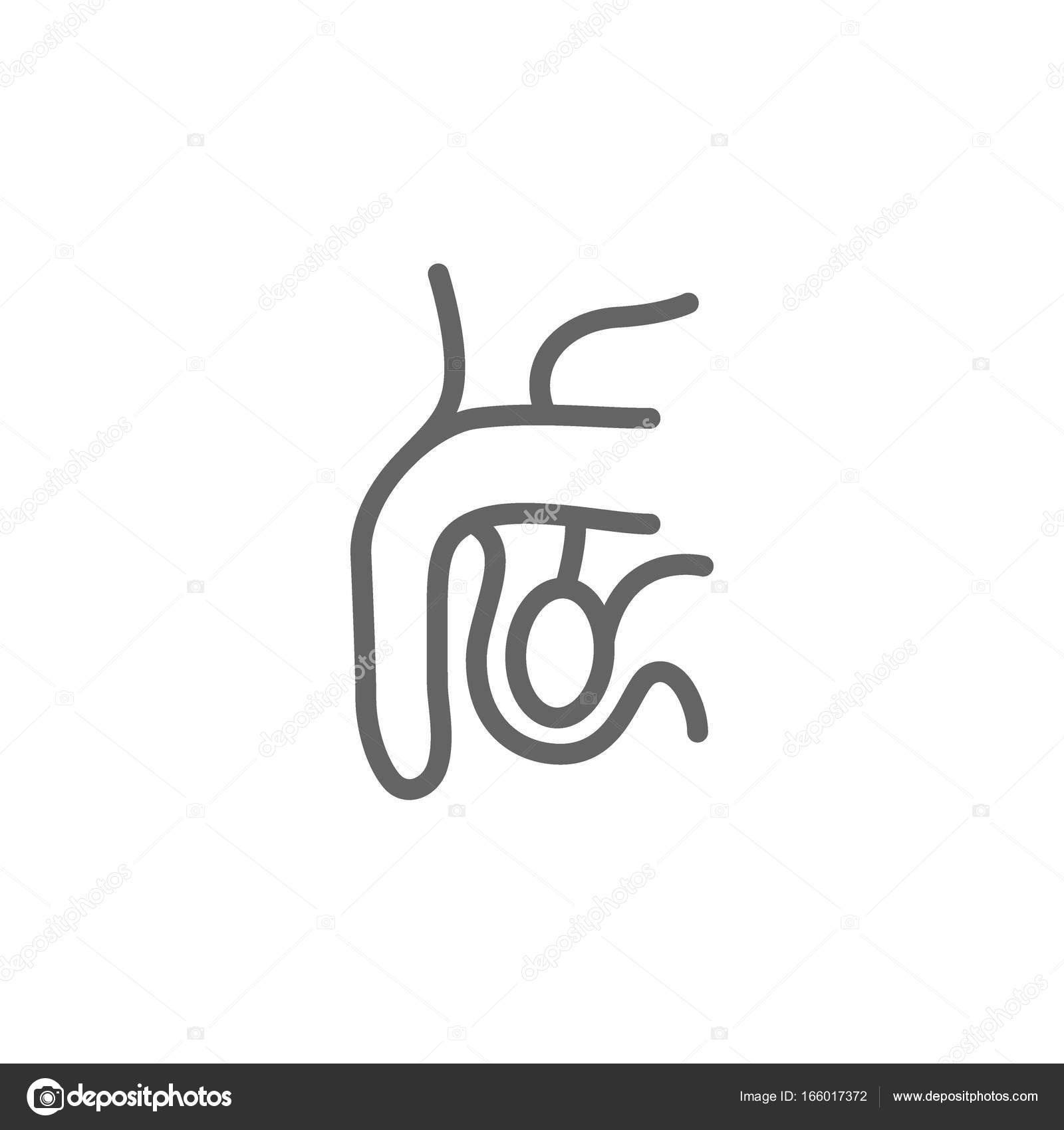 bilder av den manliga penis