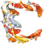 Photo watercolor koi carps fish