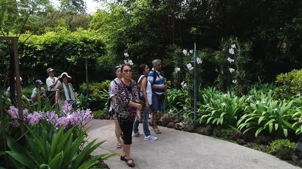 Asijských turistů navštívit národní Orchid zahrady v Singapuru, Singapur