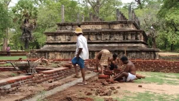 Image result for people working in Sri lankan archaeological site