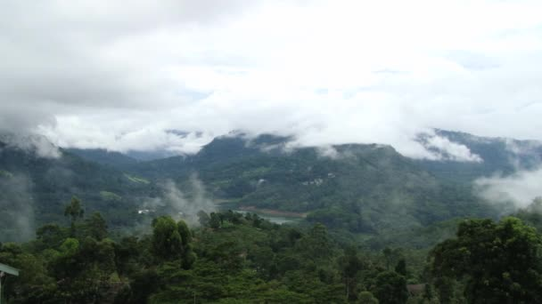 View to the tropical forest and sky with fog and clouds in Nuwara Eliya, Sri Lanka.
