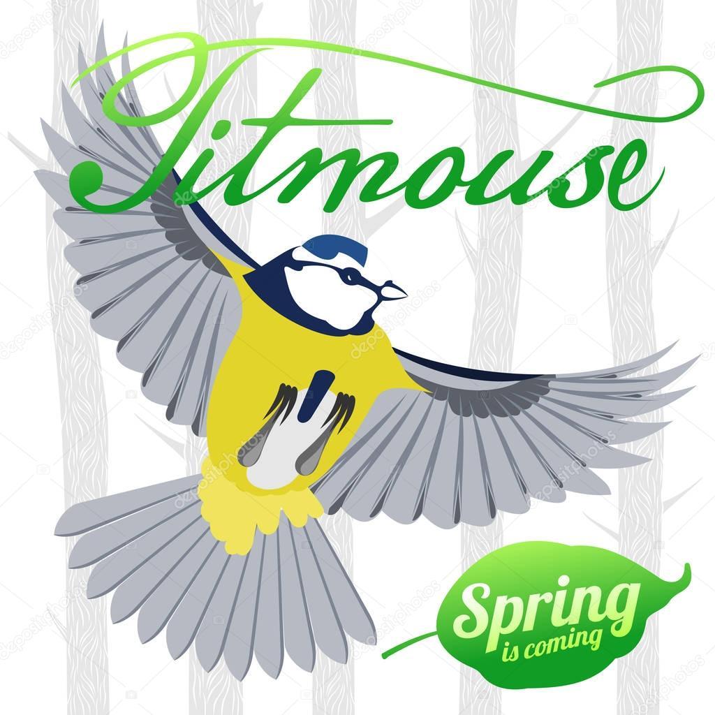 Bird titmouse vector logo