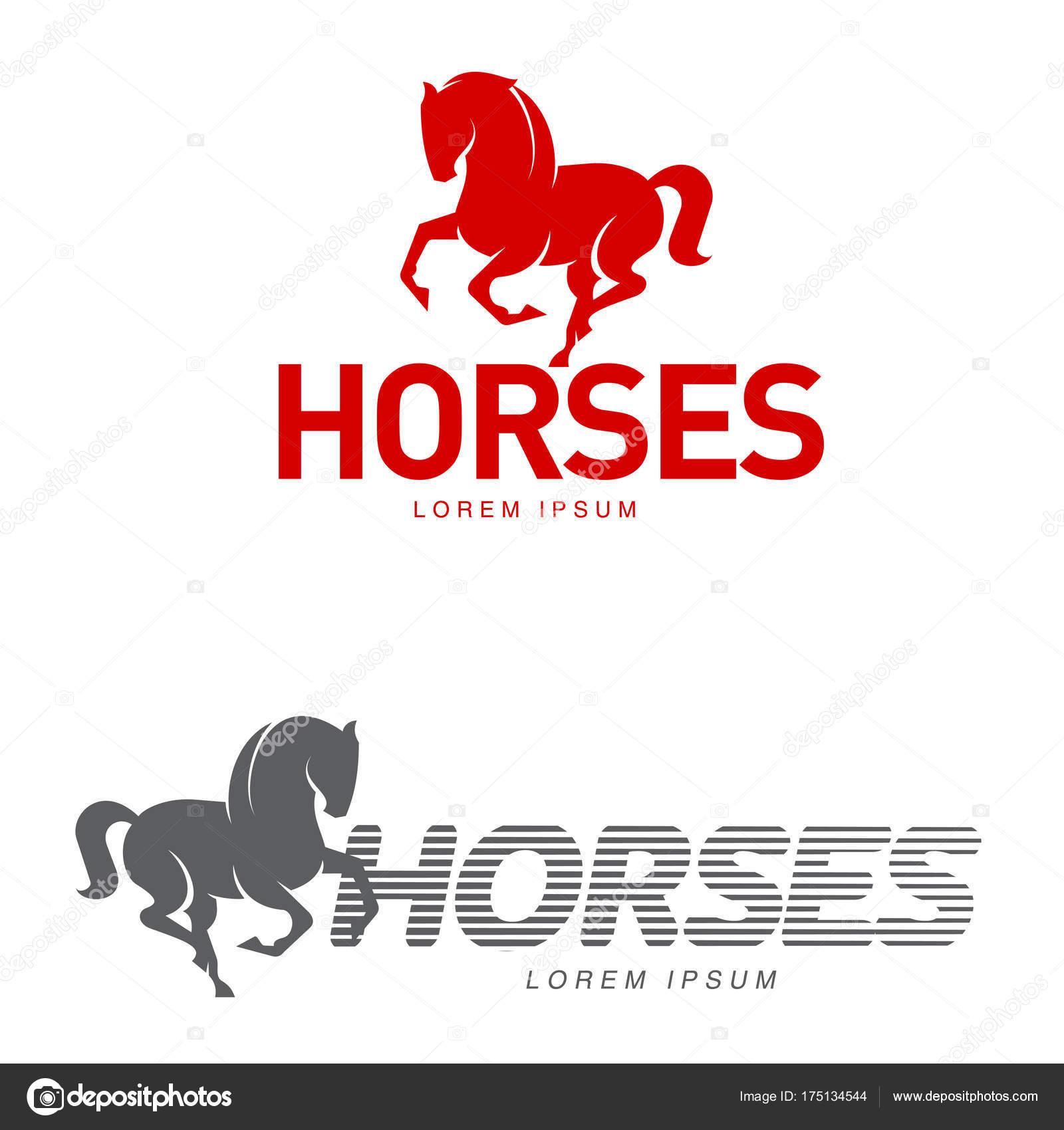 Horse Profile Graphic Logo Template Vector Illustration White ...