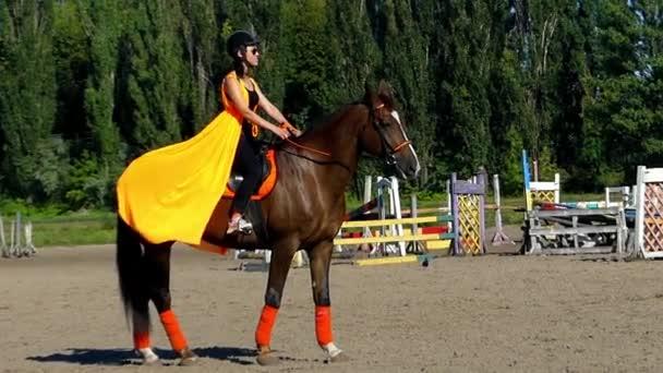 fordert der Reiter das Pferd auf, sich in Bewegung zu setzen. Zeitlupe.