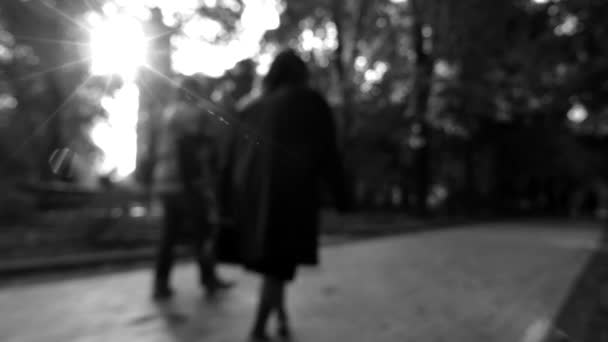 Black and White Shot in the Park. People Walking Out of Focus.