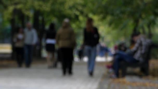 Lidí, kteří jdou v parku rozostřený