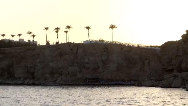 Egzotik palmiye ağaçları günbatımında Mısır'daki Mountaneous sahil üzerinde harika görünüyorsun