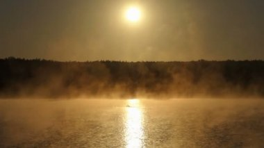 Young man swims crawl in a hazy golden lake
