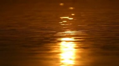 A golden sun path on the Black Sea surface in summer in slo-mo