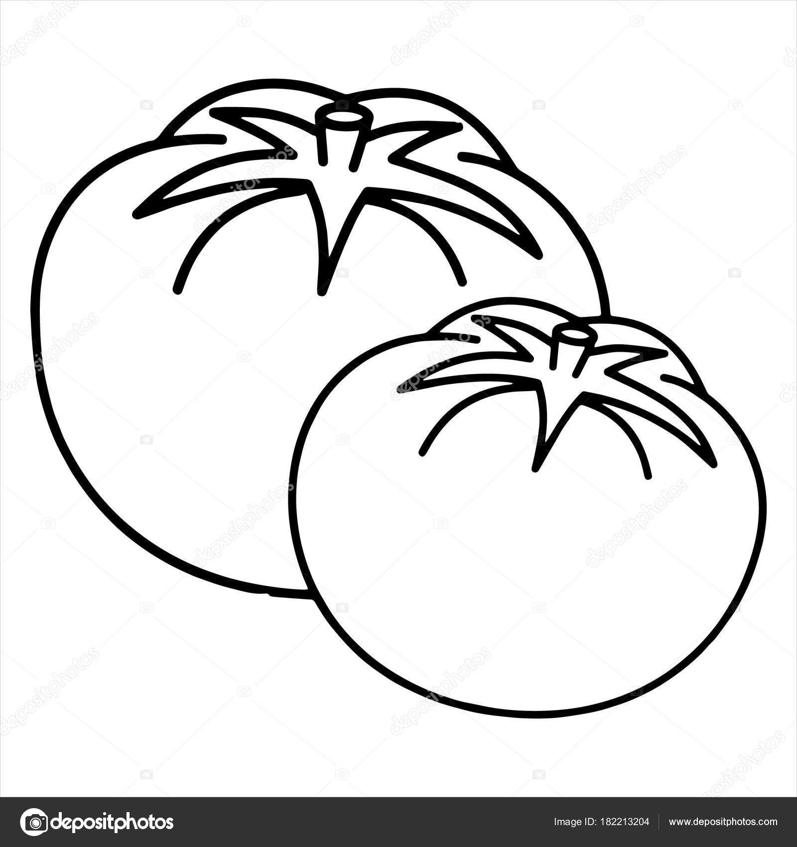 Tomate dessin anim mignon sur fond blanc pour enfants imprime image vectorielle foxynguyen - Tomate dessin ...