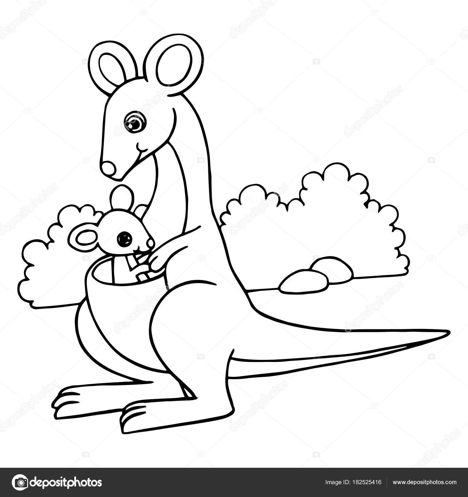 Cute Cartoon Kangaroo White Background Childrens Prints Shirt Color