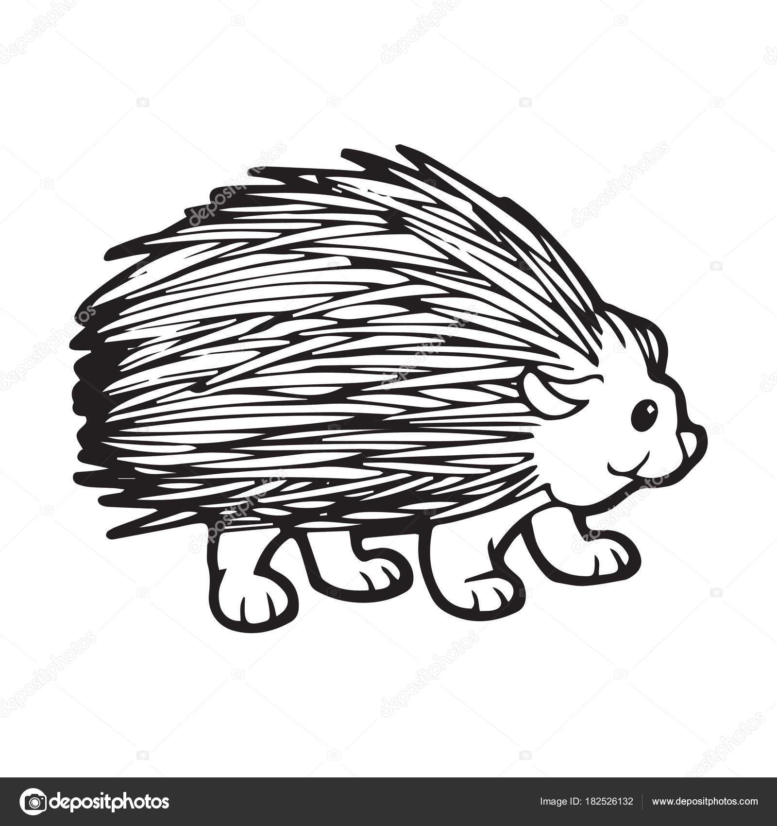 Niedlichen Cartoon Igel Auf Weißem Hintergrund Für Kinder Drucken