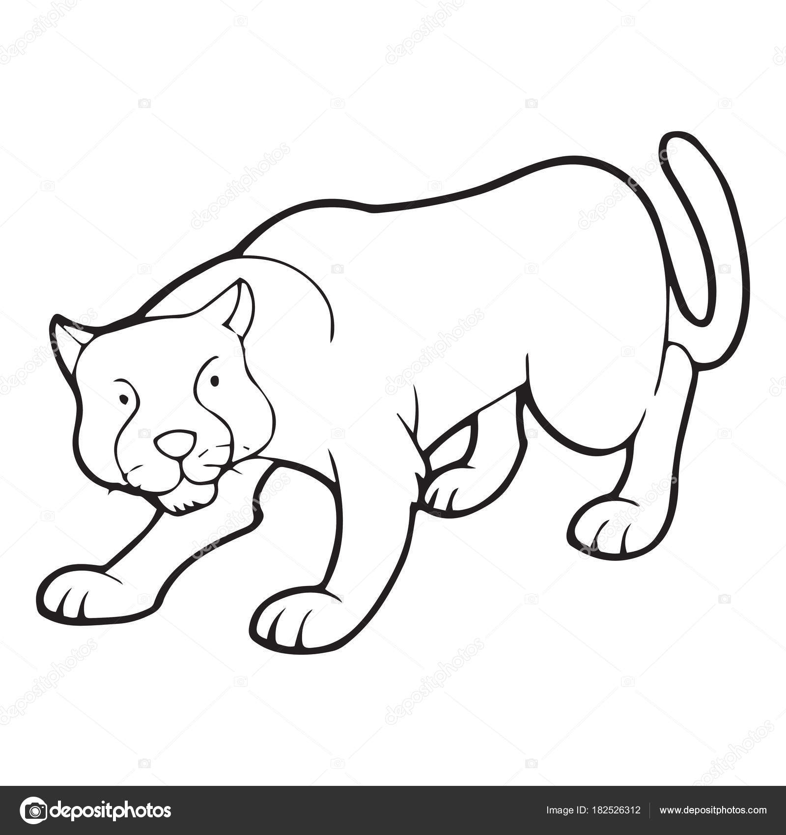 Imagenes Animales Carnivoros Para Pintar Pantera Linda Historieta