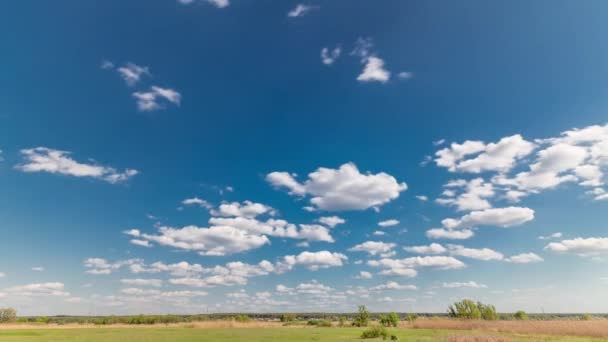 Green field and blue sky with white cloud timelapse