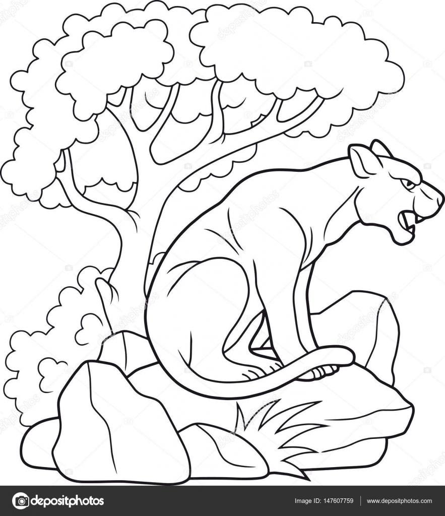 Pantera se encuentra en un libro de colorear de roca — Archivo ...