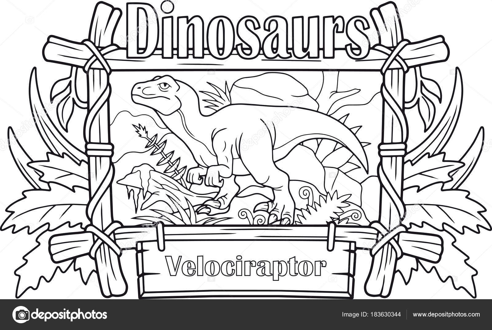 Velociraptor Carnívoro Libro Para Colorear — Archivo Imágenes ...