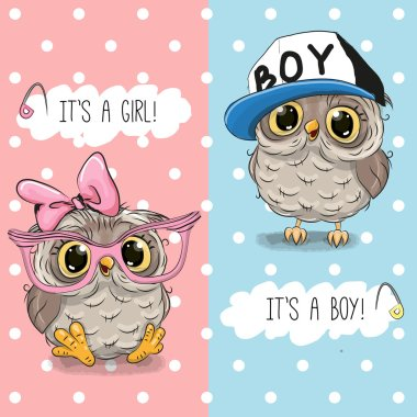 Baby Shower greeting card with Owls boy and girl stock vector