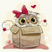 Fotografia Ragazza carina Cartoon Owl e una casella