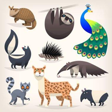Wild animals from savanah, desserts and woods