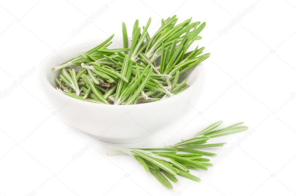 Fresh rosemary in a bowl on white