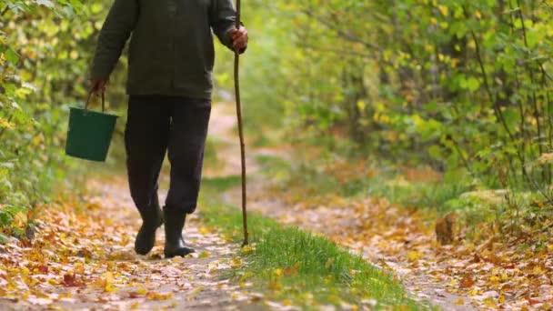 Muž kráčí podzimním lesem