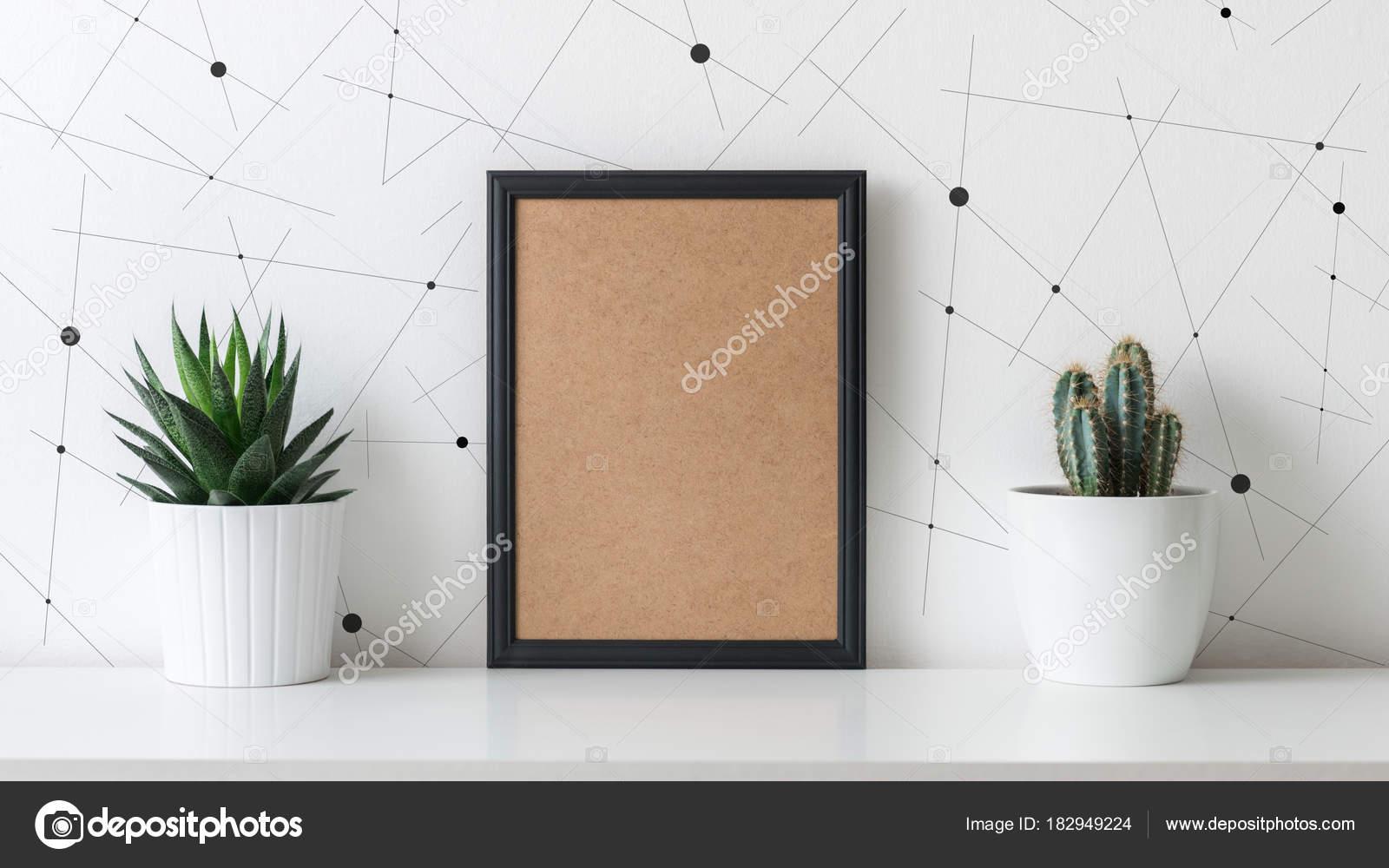 Moderne kamer decoratie diverse cactussen succulente planten