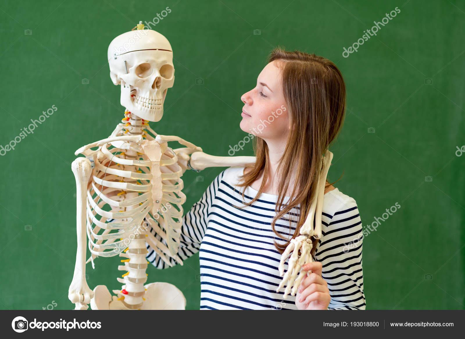 Escuela Superior Fresco Retrato Estudiante Con Esqueleto Del Cuerpo ...