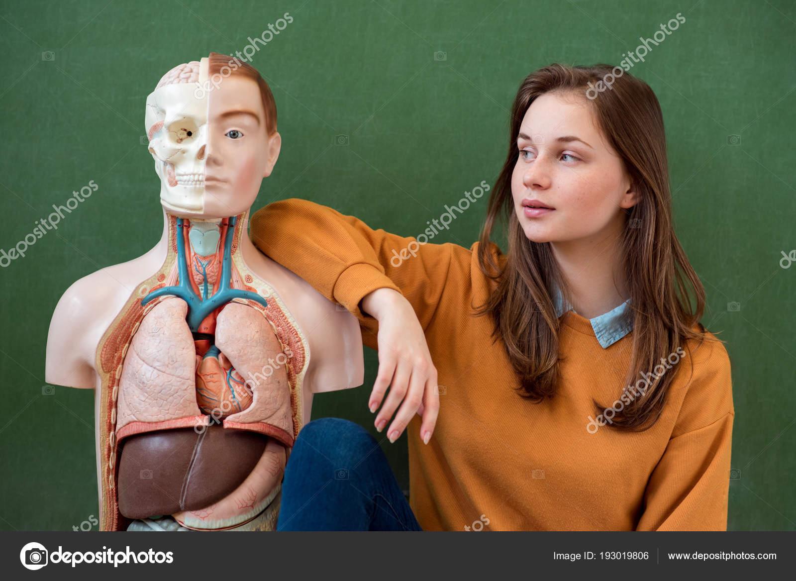 Cool Female High School Student Portrait Artificial Human Body Model