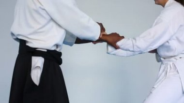 Martial arts master practice aikido with a woman stock video martial arts master in black hakama practice aikido with a woman m4hsunfo